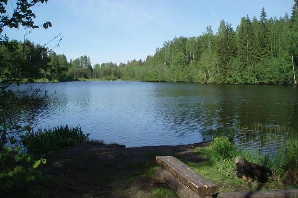 Lake Rae Hiking Trail and Camping Site