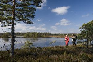 President's hiking trail at Jäneda