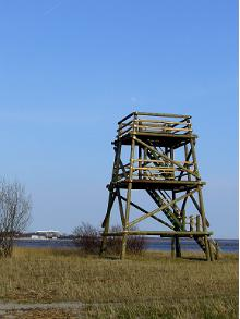 Pärnu Coastal Meadow Protection Area