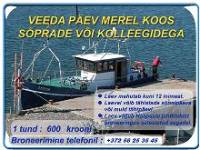 Boat trip for up to 12 people