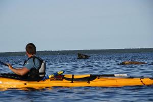 Two-day kayaking trip around the islets of Hiiumaa