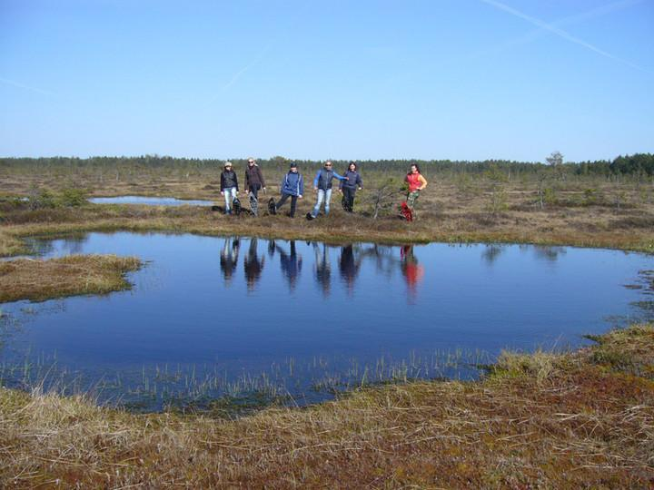 Luitemaa Nature Conservation Area