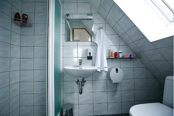 Shower room in Metskitsetuba (Roe Deer Room), River Rose Guesthouse in Tori Parish in Pärnu County on the edge of Soomaa