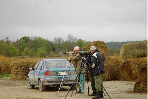 Matsalu National Park, birdwatchers
