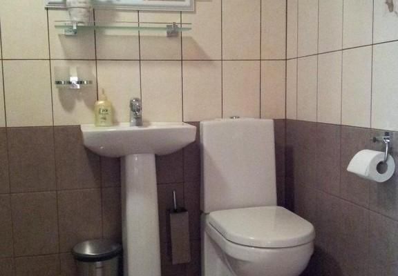 Lavatory with a shower stall