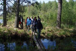 Crossing the Toolamaa stream during a hike in Meelva landscape protection area