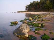Le littoral Estonien