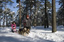 Sledging and snowtubing in Estonia