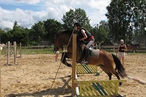 Show-jumping training
