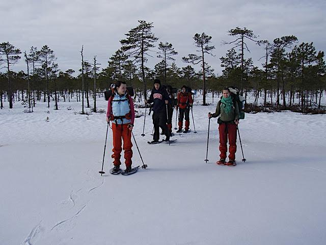 Hikers in Meenikunno bog