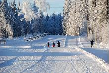 Tamsalu Sports Complex Ski Trails