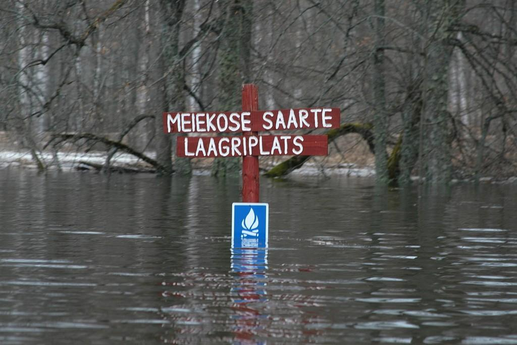 Flooded area
