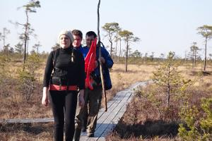 We will walk through the bog along boardwalks