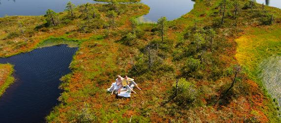 Estonians are taking a break in the nature