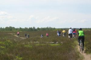 Cycling trip along eskers and swimming in 9 bog lakes