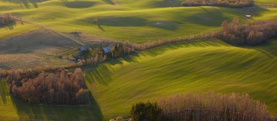 The primeval hills and valleys of Estonia