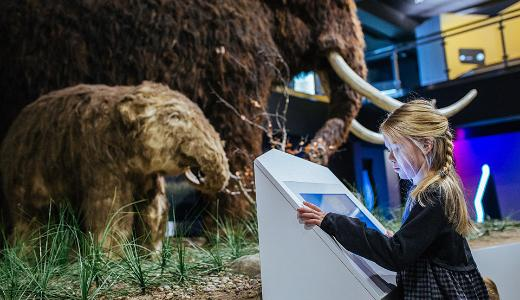 The best of Estonian museums 2018