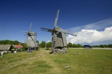 Nature Tour: Discover Western Estonia and the islands