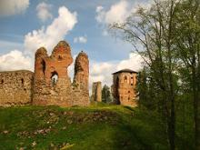 Ruins of the Vastseliina Episcopal Castle