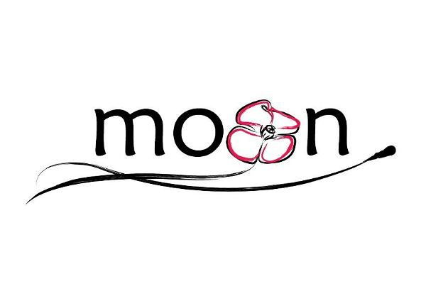 The logo of MOON