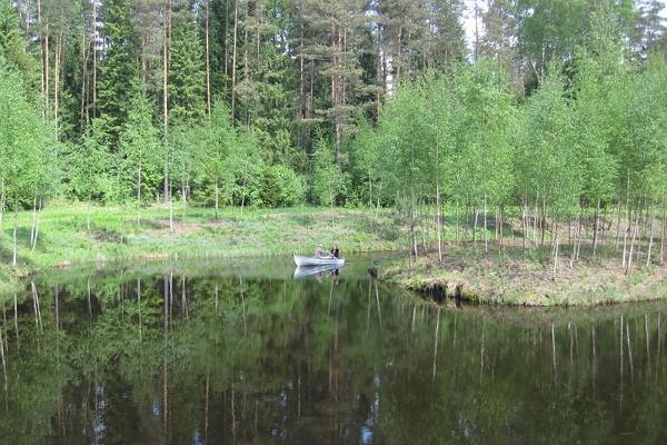Romance on the Männiku Forest Farm pond