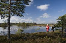 New hiking trail runs through Estonia