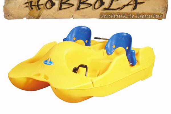 A small paddle boat.