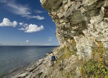 The limestone cliff and klint