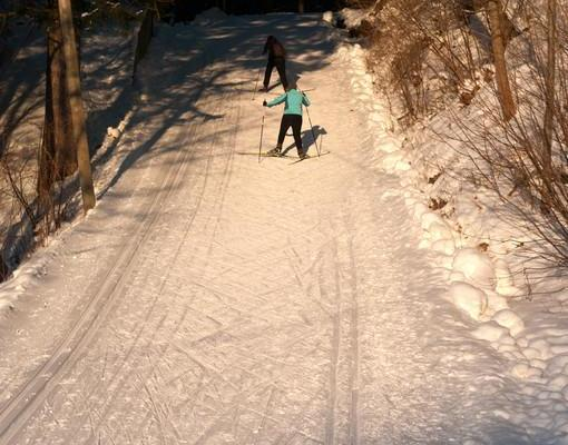Skiing lessons for tourists in Tallinn