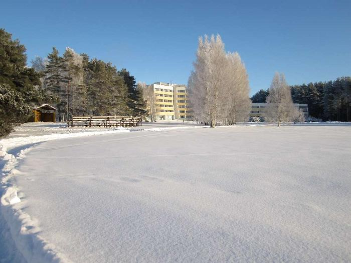 Winter in Värska