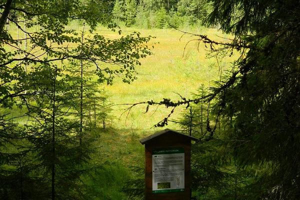 Vällamäe hiking trail