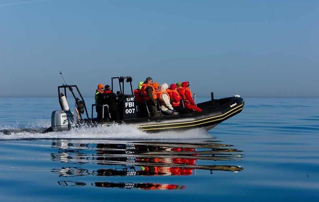 Sea safari on Tallinn Bay for 10 people