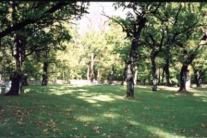German military cemetery in the Rakvere oak grove