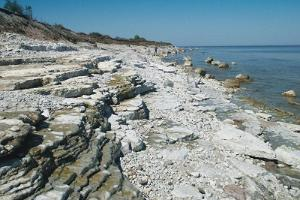 The limestone shore in Osmussaare