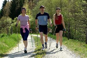 Jogging, Nordic walking and cycling tracks in the forest