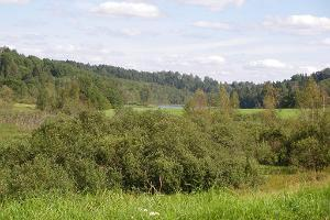 Lake Uhtjärv in Urvaste Primeval Valley