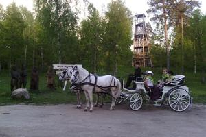 Carriage ride with a picnic, Ruunawere-Varbola fortress-Ruunawere