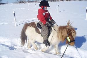 Pony ride / riding for small children