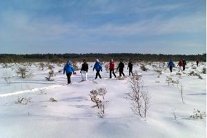 Bog shoe hike in Soomaa National Park in winter