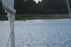 Swimming and rowing at Hobulaiu