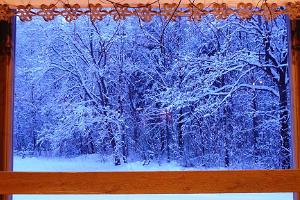 A winter masterpiece, framed by a window in the Party room