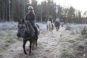 Kivisaare Riding Farm