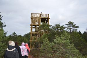 Koigi bog, observation tower