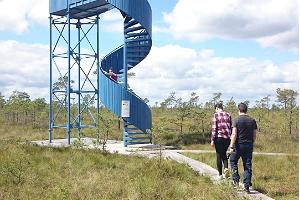 We will climb the watchtower and enjoy the wonderful view of the bog