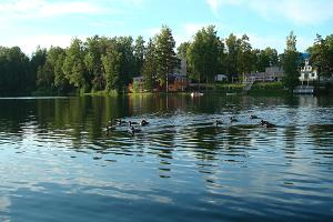 Nelijärve Holiday Centre on the shore of Lake Purgatsi