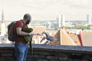 Food Sightseeing: Medieval Tallinn – a culinary voyage to the medieval Old Town