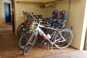Bicycle rental at Kassari Resort
