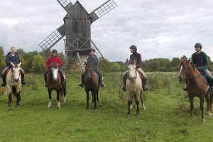Horse trips to the land of fairies - on a sleigh, a carriage or on horseback