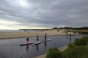 SUP paddle boards for a group