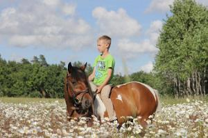 Pony ride and riding for small children